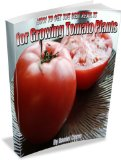 How to Get the Best Results for Growing Tomato Plants